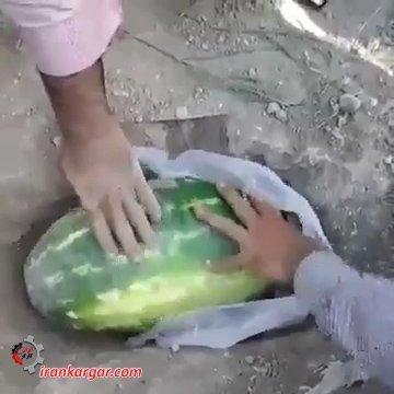 تشییع جنازه هندوانه