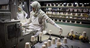 مشارکت اقتصادی زنان ۴