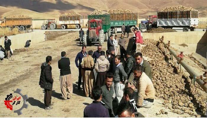 اعتصاب و اعتراض کشاورزان پیرانشهر-min