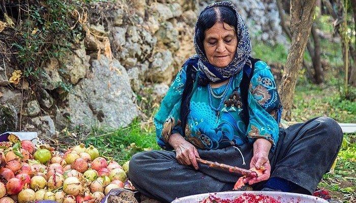 برداشت انار در اورامانات کردستان همراه با تصاویر زیبا و خاطره انگیز