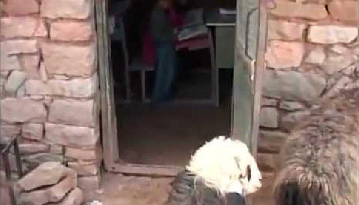 فاجعه پایان ناپذیر در این حکومت- مدرسه دانشآموزان مسجد سلیمان یک آغل گوسفند است