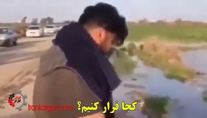 گریههای هموطن کشاورز خوزستانی