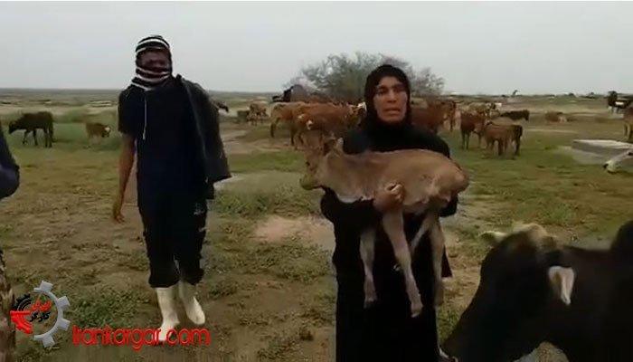 آخرین خبرهای سیل در استانهای لرستان، خوزستان و مازندران