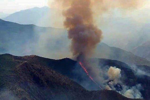 آتشسوزی در جنگلهای ارسباران در آذربایجان شرقی و شعلهور شدن مجدد آتش